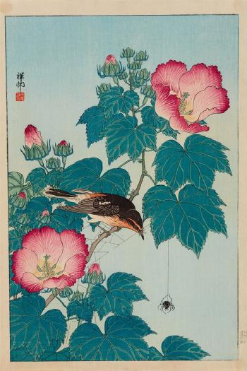 Fly Catcher On A Pink Mallow With Spider By Ohara Koson Blouin Art