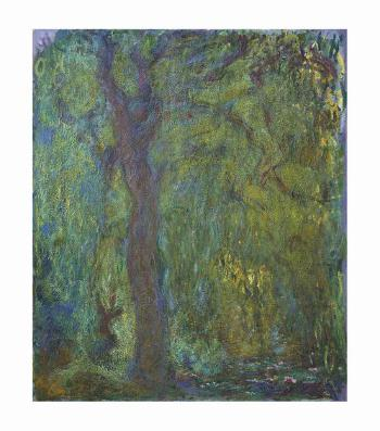 Saule Pleureur by CLAUDE MONET