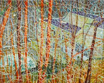 The Architect's Home In The Ravine by PETER DOIG